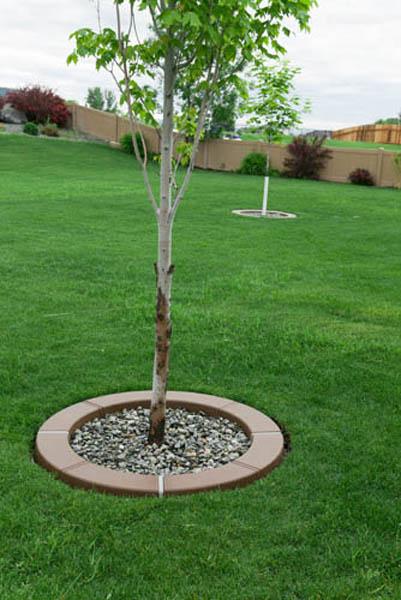 Landscape edging ideas for Tree edging border ideas
